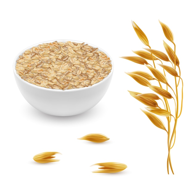3d realistic oat ears, grains with white bowl. detailed cereal plant Free Vector