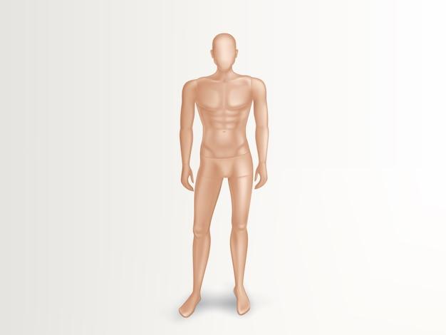 Иллюстрация 3d мужского манекена, нагого полного тела человека. Бесплатные векторы