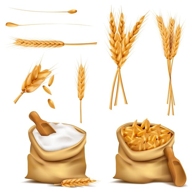 現実的なセット穀物の3dアイコン 無料ベクター