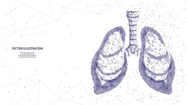 Человеческие легкие и трахея. органная анатомия. коронавирусная пневмония, рак, пересадка органов, туберкулез, астма. инновационные медицинские технологии. низкая поли каркасная иллюстрация 3d. Premium векторы