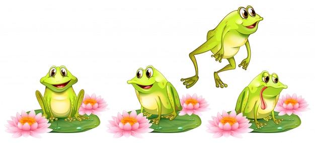 睡蓮の上の4つの緑のカエル 無料ベクター