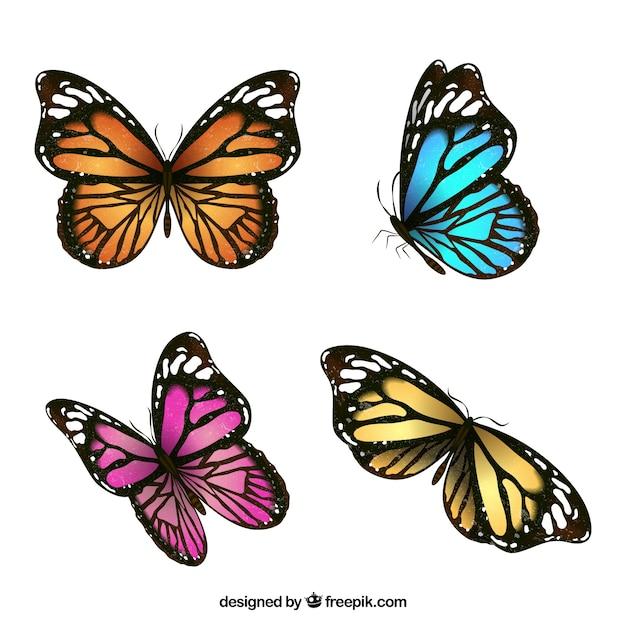 4色の蝶の美しいパック 無料ベクター