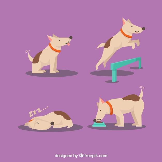 4つのシーンで犬のパック 無料ベクター