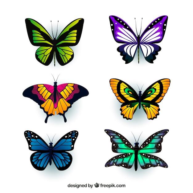 現実的なスタイルで、6色の蝶の盛り合わせ 無料ベクター