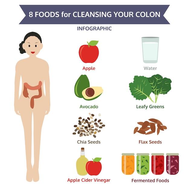 コロンをきれいにするための8つの食品、情報グラフィック食品 Premiumベクター