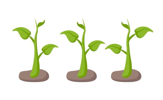 ガーデンベッドの緑の植物は、漫画のスタイルを設定 Premiumベクター