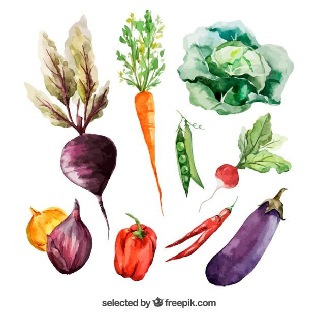 Акварель овощи Бесплатные векторы