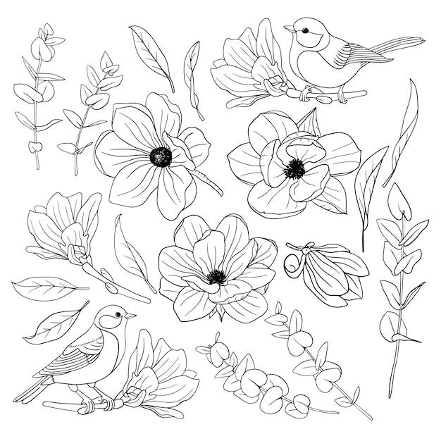 Набор элегантных цветов магнолии с птицами Premium векторы