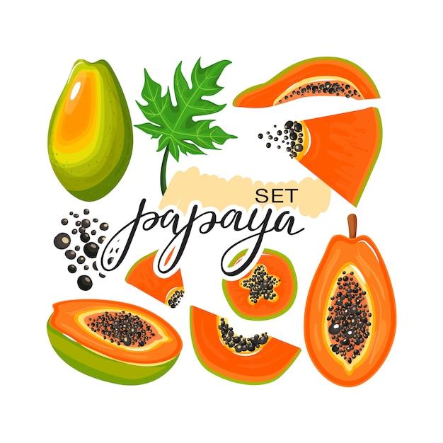 パパイヤフルーツ、葉、パパイヤスライス、トレンディなレタリングのセット Premiumベクター