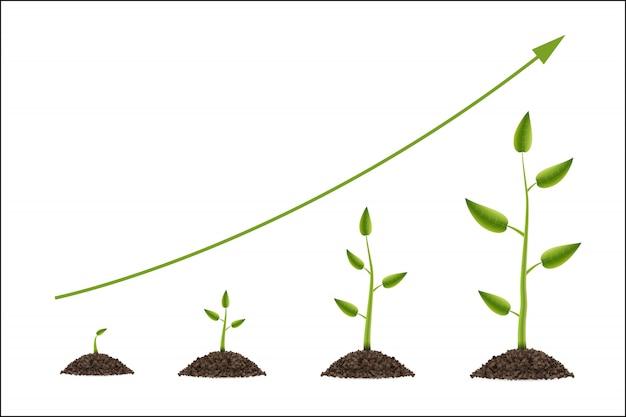 葉と緑の木の成長 Premiumベクター
