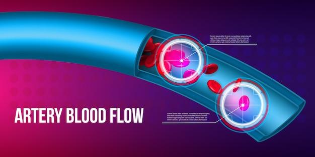 動脈の赤血球は流れ、血管を流れます。 Premiumベクター