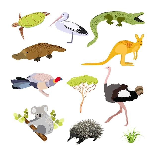 オーストラリアの動物。フラットスタイルのイラスト。国の主なシンボル。 Premiumベクター