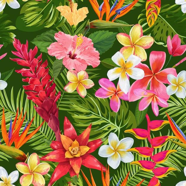 水彩の熱帯の花のシームレスパターン。エキゾチックな咲くプルメリアの花 Premiumベクター