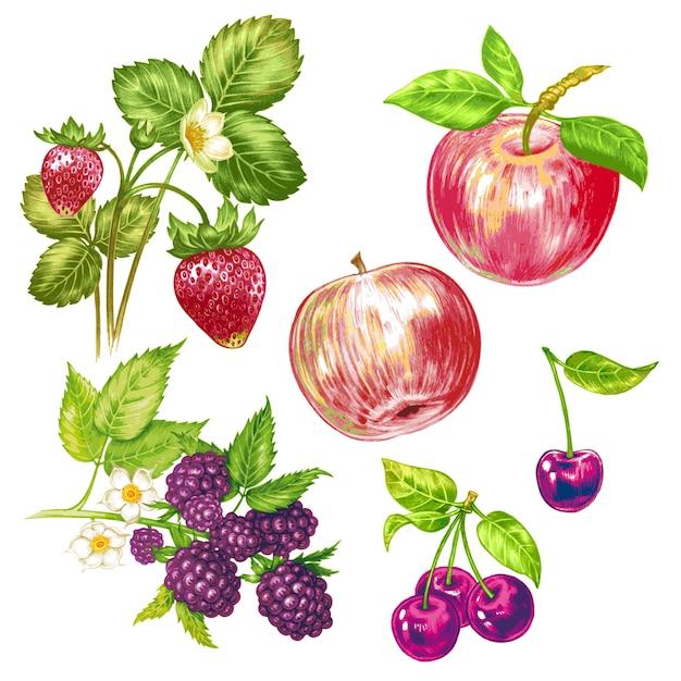 Вектор бесшовный цветочный узор с фруктами и ягодами. Premium векторы