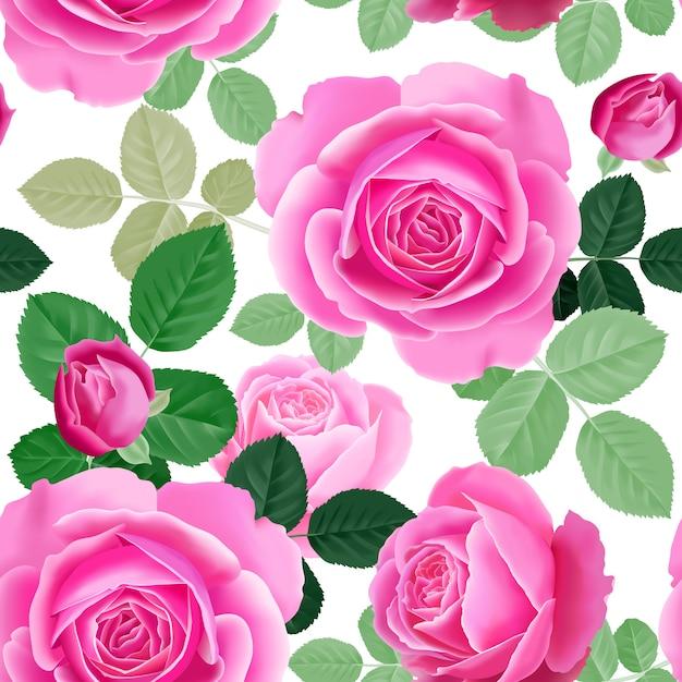 Бесшовный цветочный узор с розовыми розами. Premium векторы