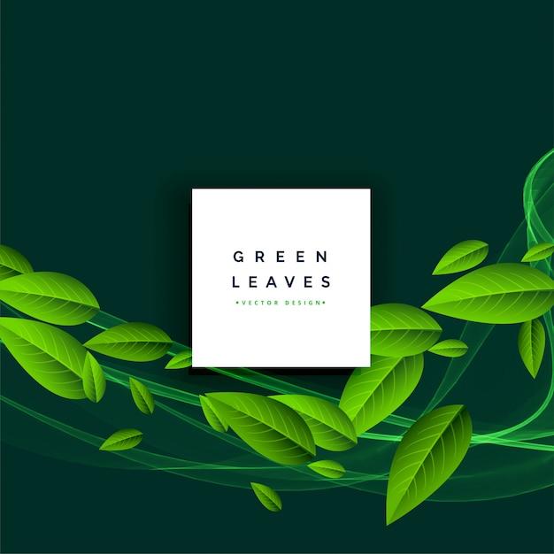 緑の葉が浮かぶ背景 無料ベクター