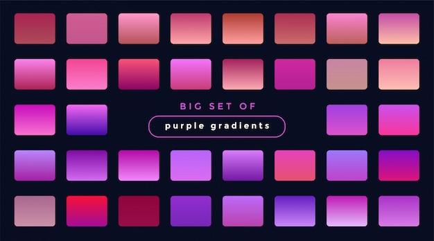 紫とピンクのグラデーションの鮮やかなセット 無料ベクター