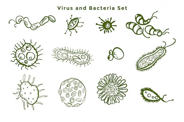微視的な細菌とウイルスの細菌のセット 無料ベクター