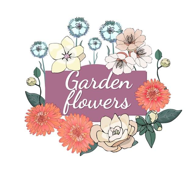 花のセット夏と春は、マリーゴールド、椿、カーネーションと庭の花を分離しました。 Premiumベクター