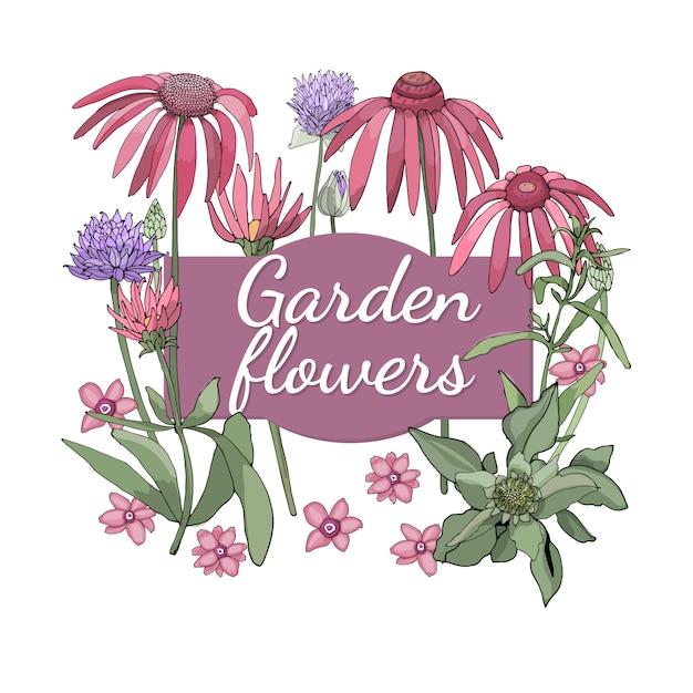 Цветочный набор. летом и весной выделяют садовые цветы и травы с луком, эхинацеей (шелковицей), шелковистой полынью (эстрагоном). Premium векторы
