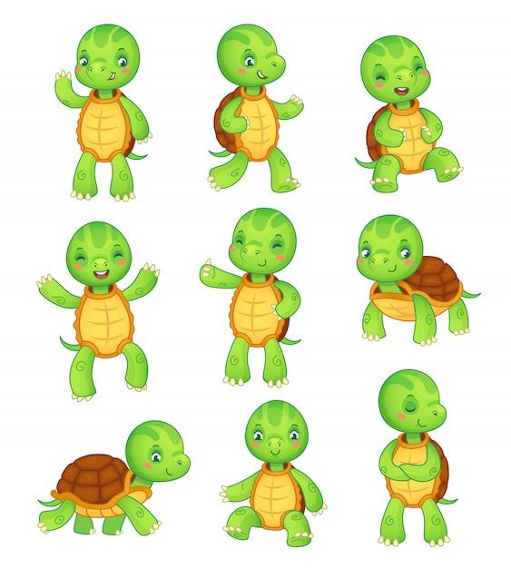 Черепаха красочные отдельные символы вектор животных иллюстрации коллекции Premium векторы