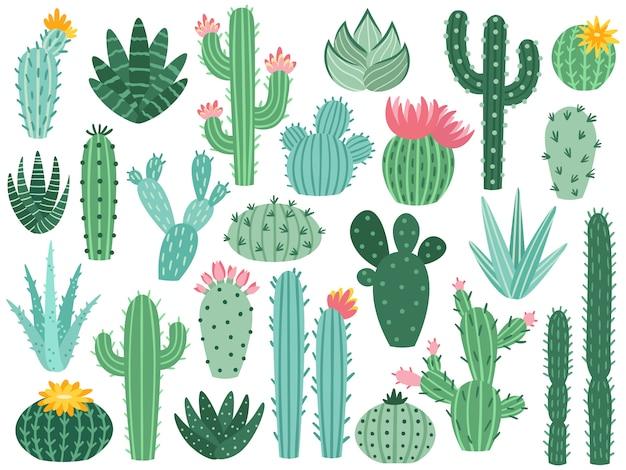 メキシコのサボテンとアロエ。砂漠のとげのある植物、メキシコサボテンの花と熱帯の家の植物分離コレクション Premiumベクター
