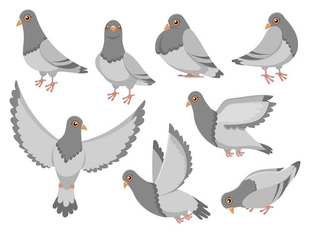 Мультяшный голубь город голубей птицы, летающие голуби и городские птицы голуби изолированных иллюстрация набор Premium векторы