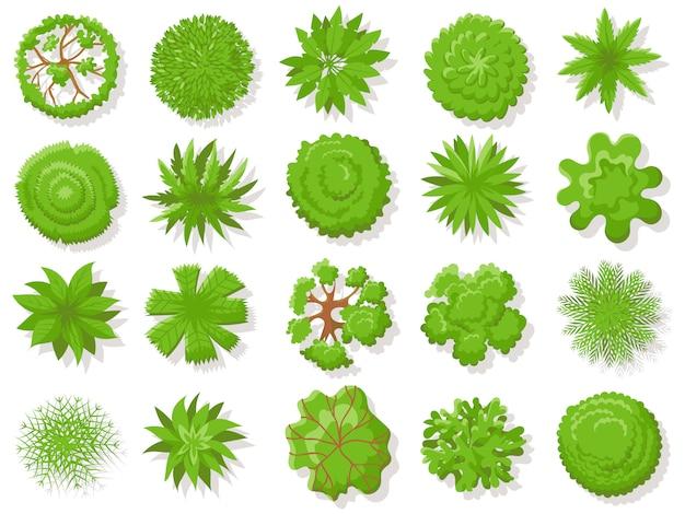 トップビューの植物。熱帯の木、空中地図分離コレクションの上から緑の植物の木 Premiumベクター