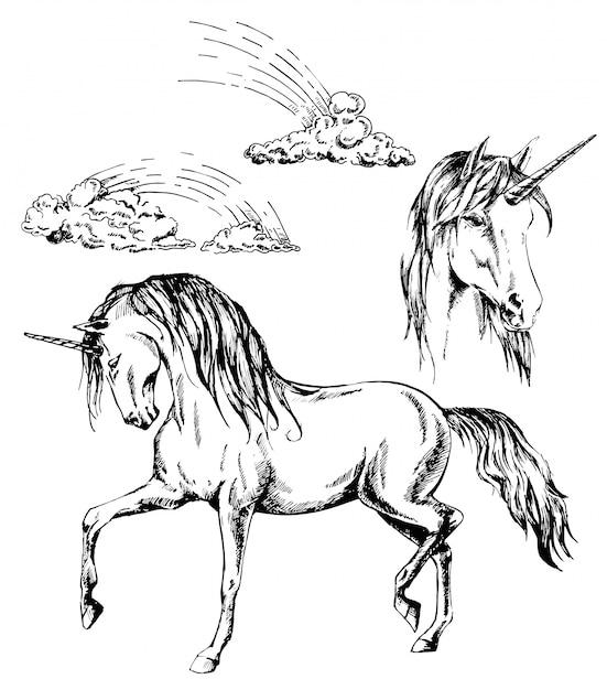 Единорог, голова единорога и чернила радуги рисованной иллюстрации Premium векторы
