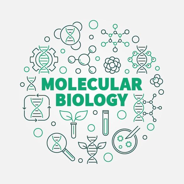 Векторная иллюстрация концепции молекулярной биологии раунд в стиле тонкой линии Premium векторы