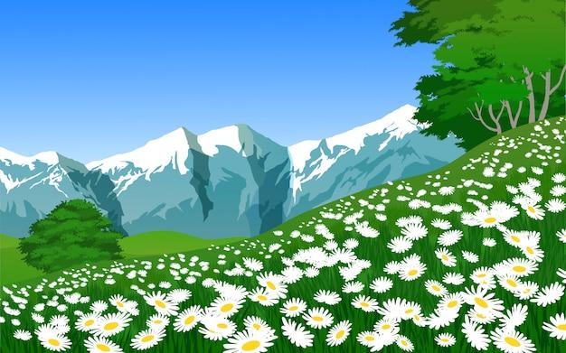 緑の草と花の美しい山の風景 Premiumベクター