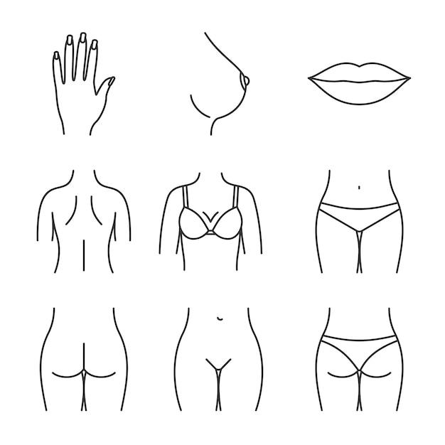 Набор иконок частей женского тела Premium векторы