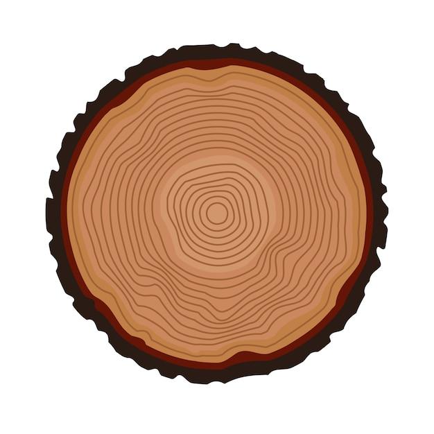 年輪の背景。一年生の木。ベクトルイラスト Premiumベクター