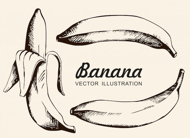 バナナのベクトルを設定します。シングルバナナ、皮をむいたバナナ。インク描画、ベクトル、分離します。 Premiumベクター