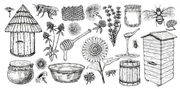 Пчеловодство эскиз значок набор. медовый винтажный набор с пчелиный улей, стеклянная банка и ложка, пчелы, медоносные цветы. рука рисунок пасеки объектов. иллюстрации. Premium векторы