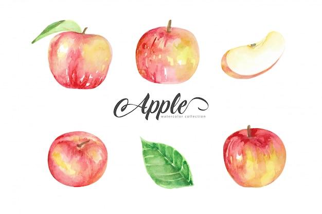 赤いリンゴスタイルの水彩画のコレクション Premiumベクター