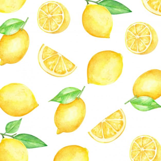 レモンスライスパターンの柑橘系の果物の水彩画 Premiumベクター