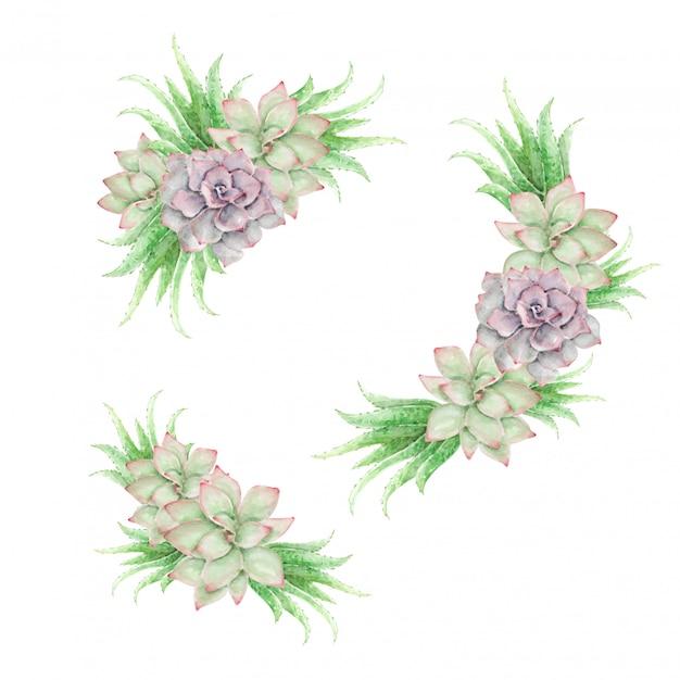 水彩サボテンとアロエベラのヴィンテージの花飾り Premiumベクター