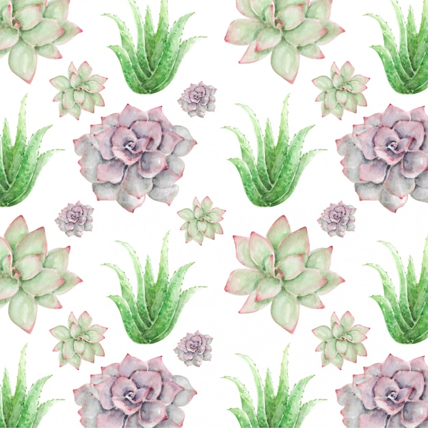 水彩のシームレスパターンサボテンの花とアロエベラ Premiumベクター
