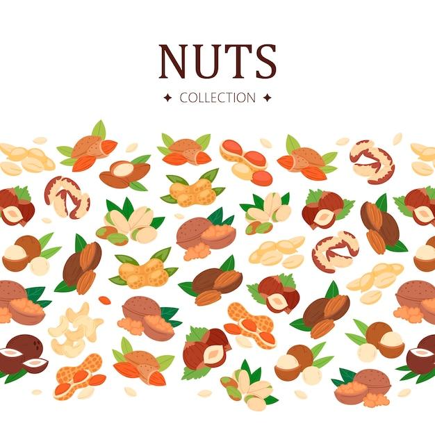 Коллекция орехов в плоском стиле Premium векторы