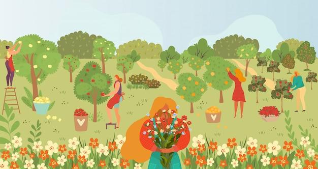 Уход за садом, садоводство, люди и фрукты на деревьях летом собирают мультяшные иллюстрации, садоводы собирают фрукты. Premium векторы
