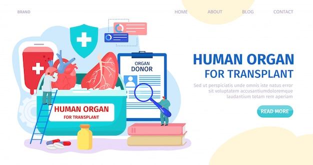 Человеческий орган для пересадки, донора посадки иллюстрации. веб-страница клиники, поиск доноров органов. доктор проверки характера сердца Premium векторы