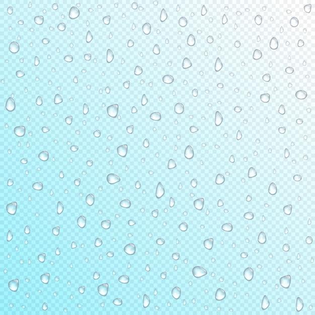 Капли воды на прозрачном фоне Бесплатные векторы