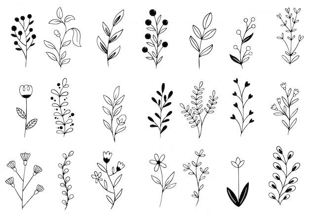 Рисованной цветы Premium векторы
