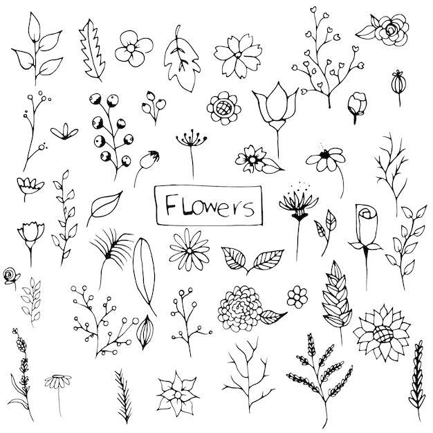 Смешные рисунки листьев и цветов, картинки смотреть весь