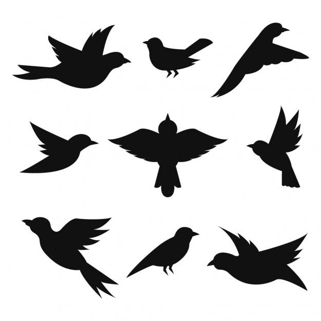 Коллекция силуэты птиц Бесплатные векторы