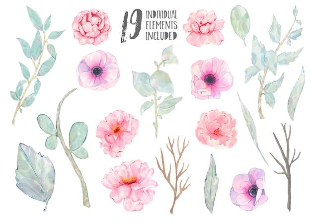 Акварель ручная роспись розовый анемон пион зеленые листья ветка, изолированные на белом Бесплатные векторы