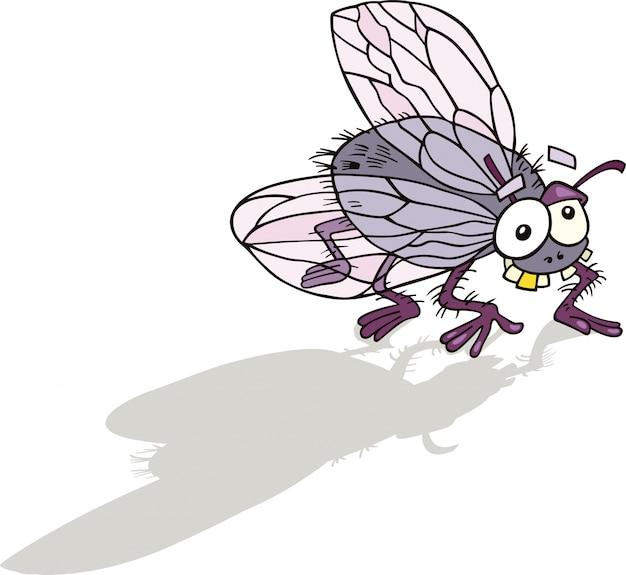 Веселый рисунок мухи