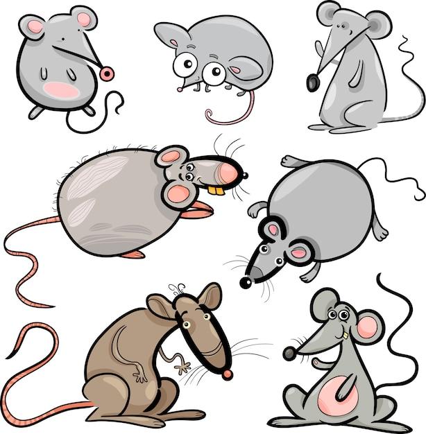 картинки прикольных крыс в векторе одного фотографа