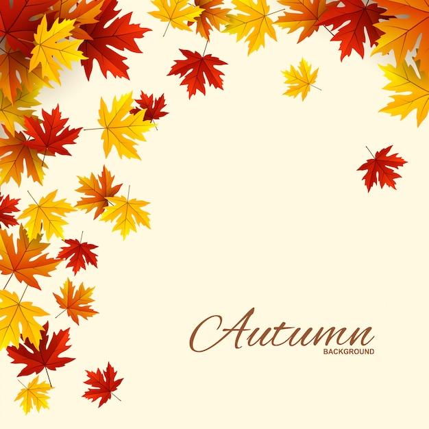 赤、オレンジ、黄色の紅葉のフレーム、 Premiumベクター